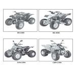 Service Manual 250cc