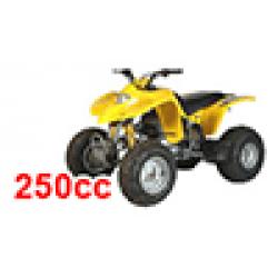 Kasea Skyhawk 250 Quad (Kasea) on